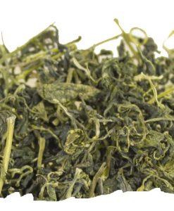 Jiaogulan, plante de l'immortalité